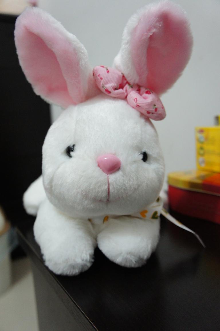 一只超级可爱滴胖兔兔