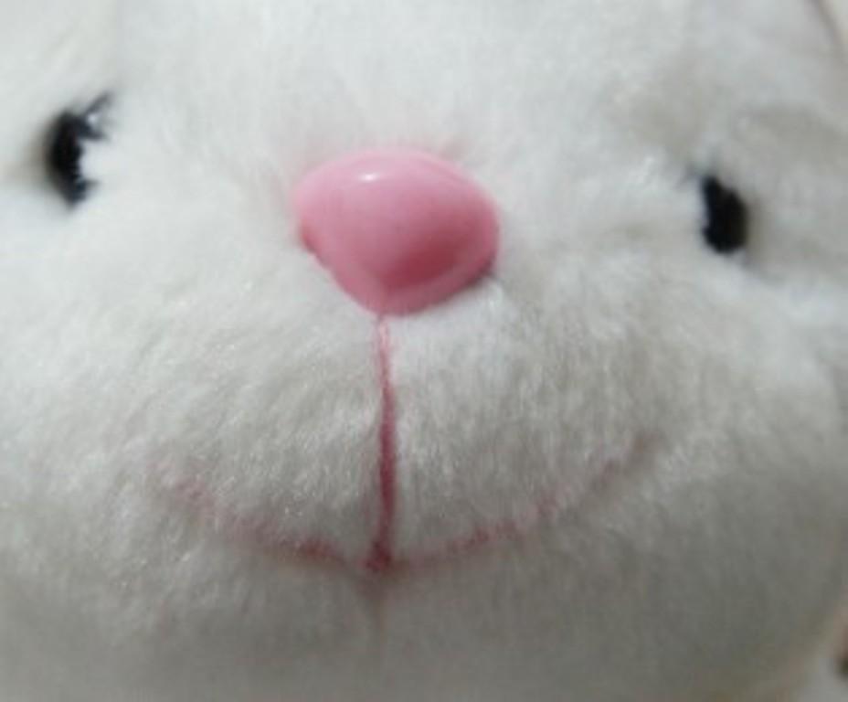 超级可爱的兔兔【组图】dm   有一只穿着海军服超级可爱的兔子,有图