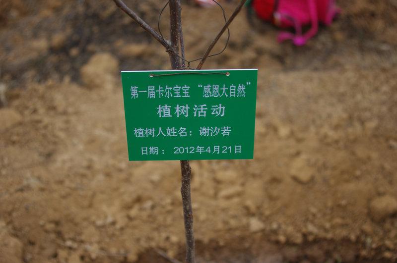 卡尔宝宝幼儿园4月植树活动掠影 4月21日卡尔宝宝幼儿园的植树活动已经落幕,但是对于孩子们来说却是刚刚开始,今年北京的春天姗姗来迟,卡尔宝宝幼儿园计划的植树活动也一再推迟,为了达到植树的意义,提前成活率,我们选择了在4月21日去植树,活动的目得很简单,体验劳动的乐趣, 分享劳动带来的快乐,感恩大自然带来的绿色。感受和爸爸妈妈在一起劳动的成果,体验和小朋友们团结协作精神。分享获得卡尔童子军植树勋章的荣誉感。   因为考虑到后期维护的问题,本次植树活动选在卡尔宝宝幼儿园在郊区的小农场,,孩子们在这里种下的树