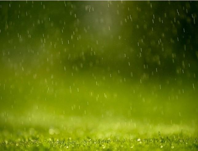 #润泽瑜伽苑# 今天是春天的第一场雨,滋润着大地万物。润泽瑜伽跟随春天的脚步,希望给更多的朋友像春雨般的滋润,抓住春天,抓住属于你的春天,一起来创奇春天的准属于你的故事吧!(2人同行,1人免单)活动喽,办半年卡送20次卡,名额有限先来先得哦,3月31日截止。报名地址: