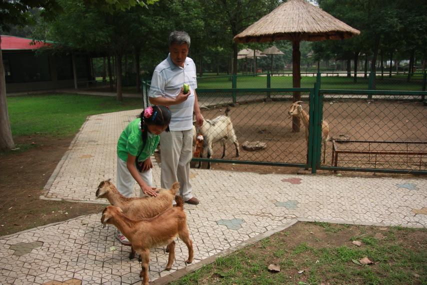 26.北京野生动物园